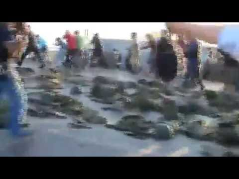 TURKISH SOLDIERS BEATEN BY PRO ERDOGAN MILITANTS IN ISTANBUL AT BOSPHORUS BRIDGE