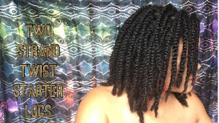 Starter Locs-Two Strand Twist On Long Hair