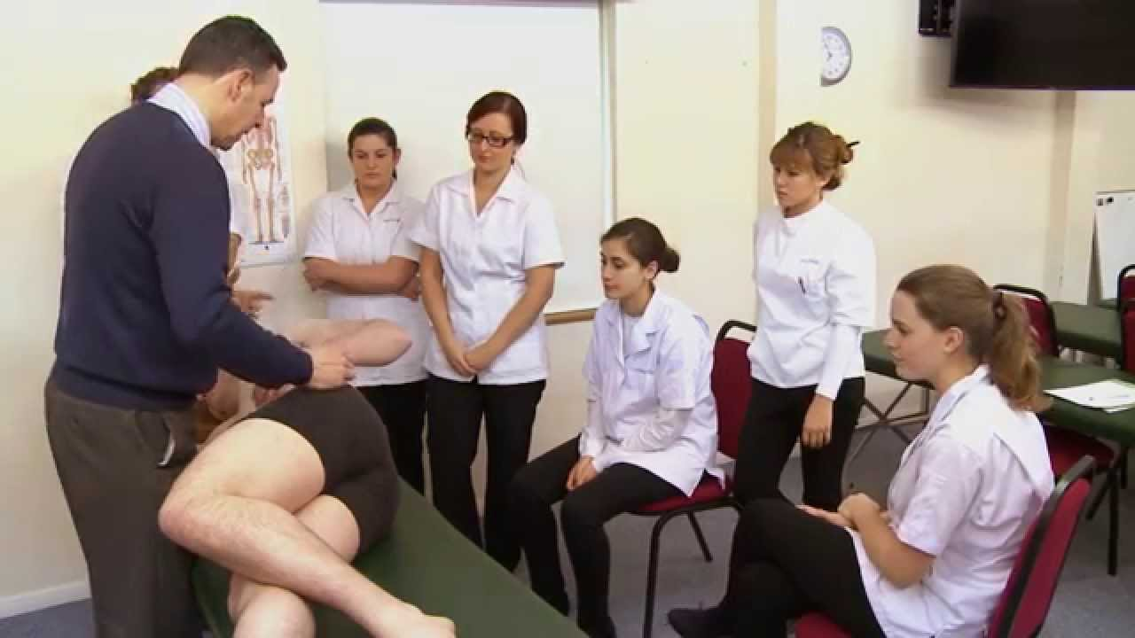 Clinical Training at the European School of Osteopathy