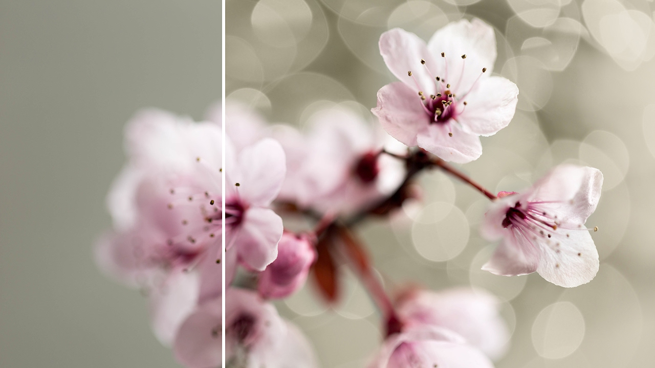 How to Add Bokeh using Photoshop