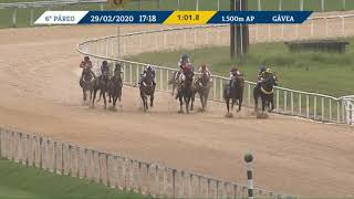 Vidéo de la course PMU PREMIO TOMMASO GUIDI (INTERNET)