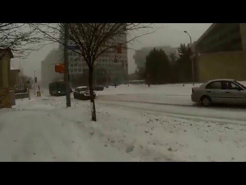 Blizzard in Stamford, Connecticut January 23, 2016