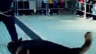 2006 大埔禁毒滅罪嘉年華-警犬拘捕匪徒訓練示範