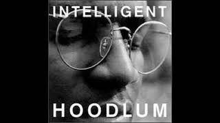 Watch Intelligent Hoodlum Party Animal video
