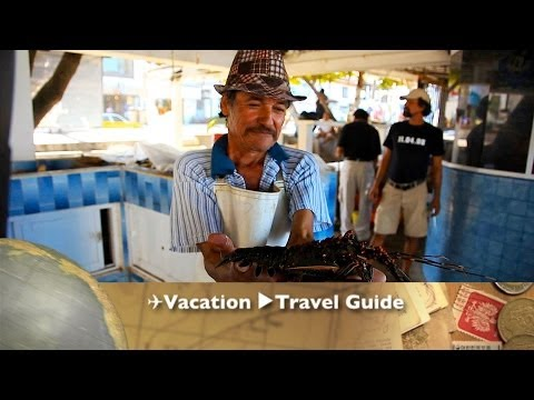 Mexico Food Market ✈Travel Guide