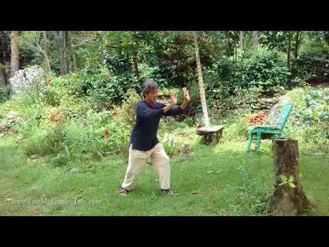 Shibashi - The 18 movements with instruction; Tai Chi/Qigong.