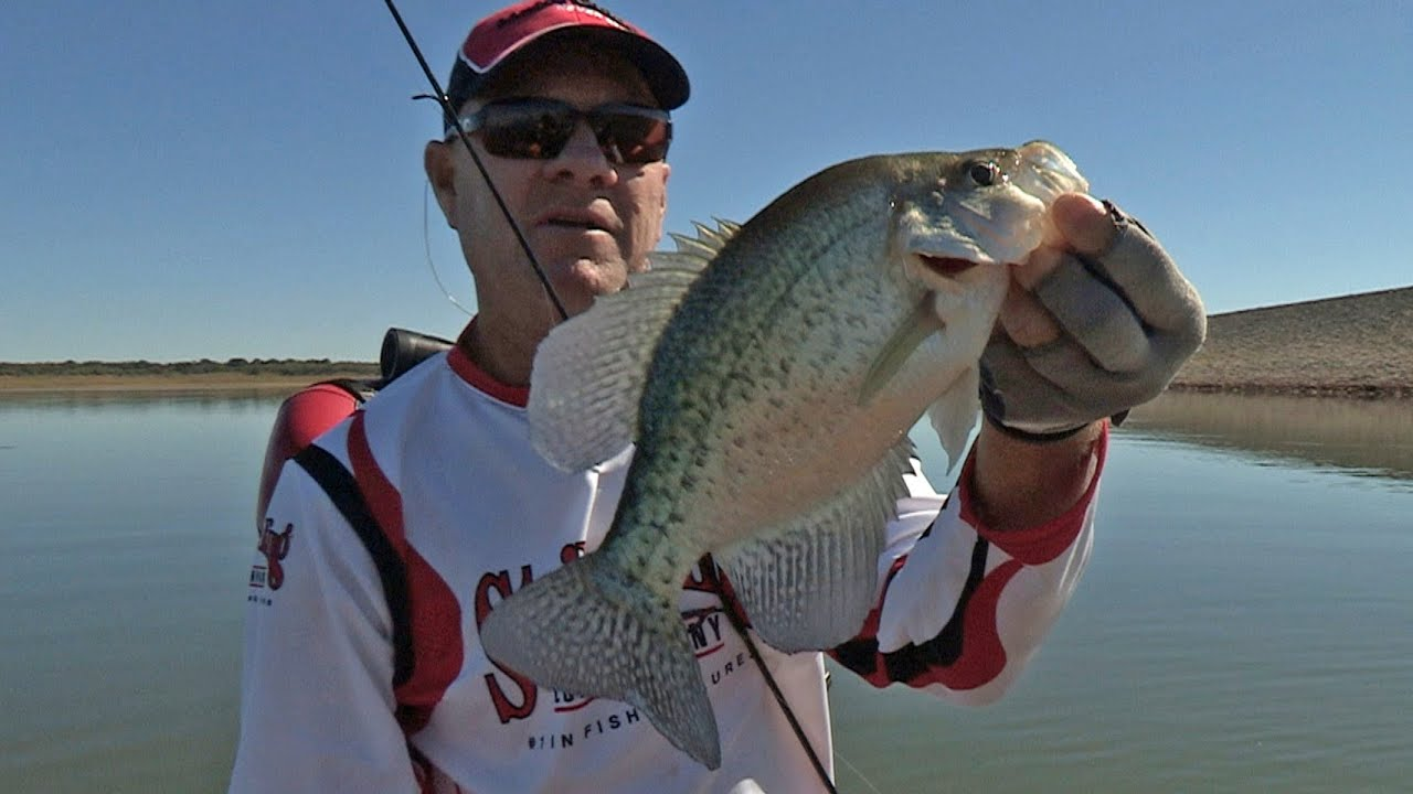 Southwest outdoors report 34 lake proctor texas crappie for Crappie fishing texas