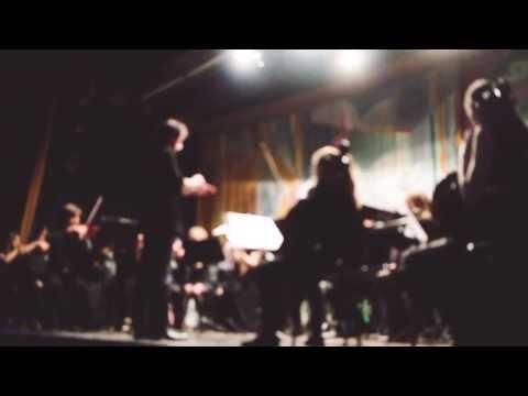 Howard Shore - Concerning Hobbits (live)
