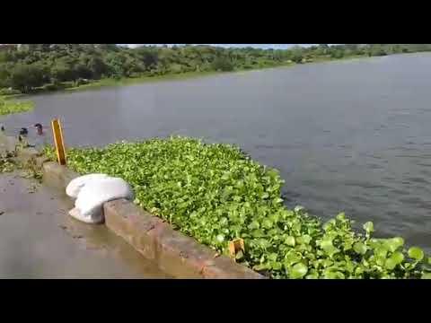 Acompanhamento diário das águas do Rio Jaguaribe entre Aracati / Itaiçaba CE