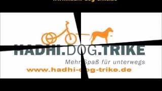 hadhi dog scooter spa mit und fr den hund