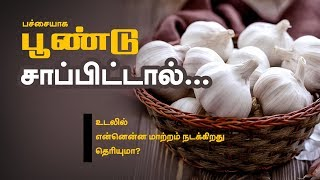 Know These Before Eating Raw Garlic - Tamil Health Tips