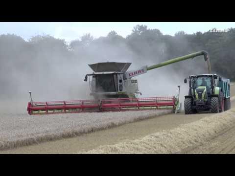 LEXION 780 TT testimonial Ramsbury / 2016