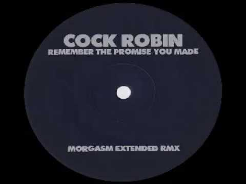 promise you made cock robin