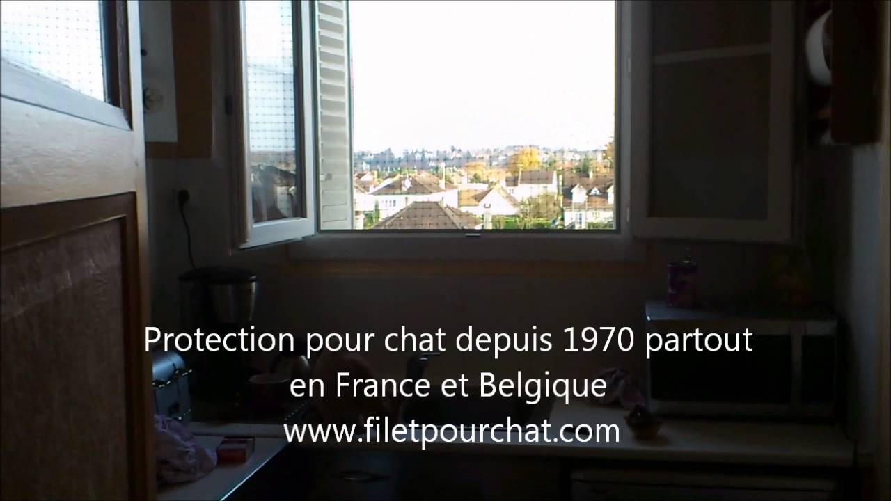 Filet de protection pour chat la fenetre youtube - Protection fenetre chat ...