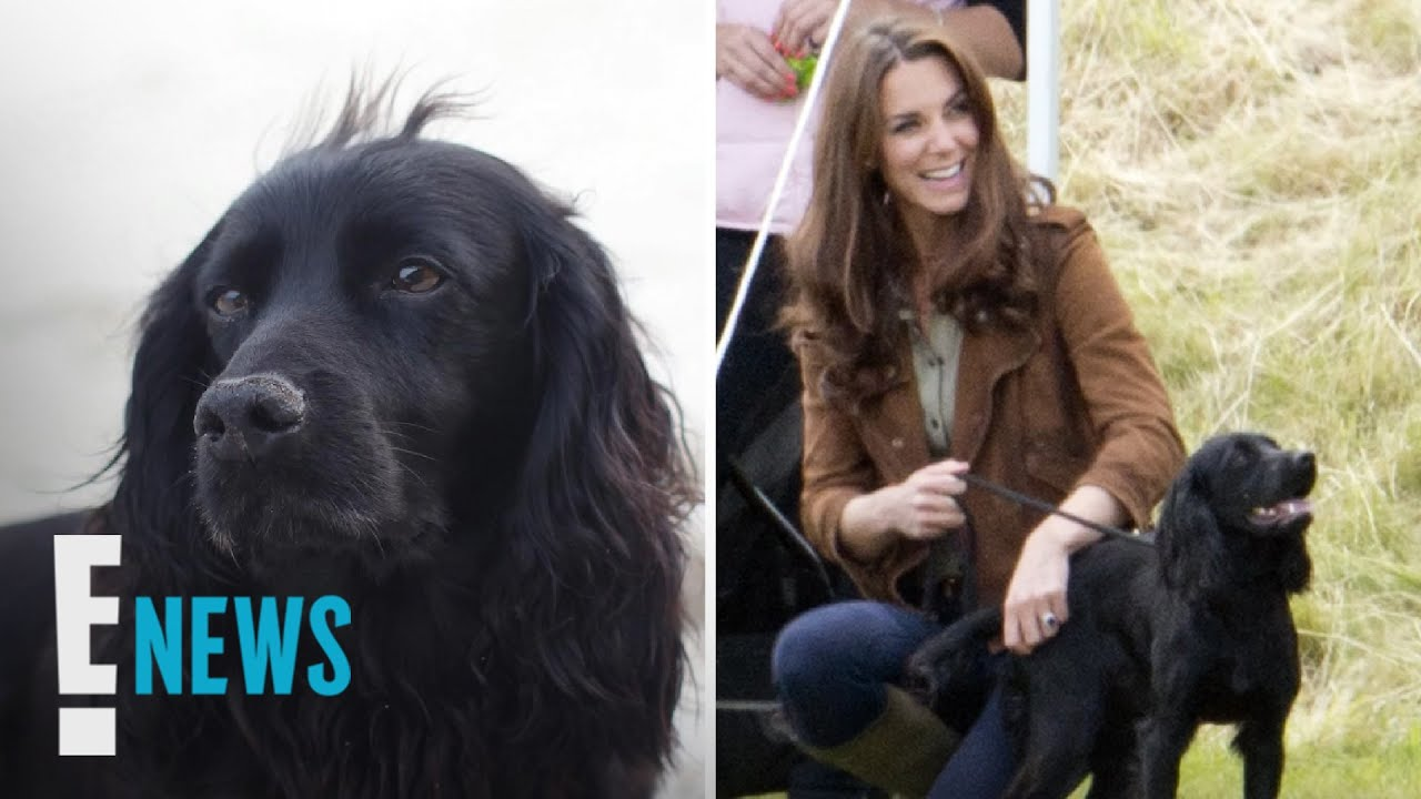 Prince William and Kate Middleton's Dog Lupo Passes Away