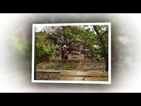 Дом престарелых в арзгире дома престарелых в омске и омской области вакансии