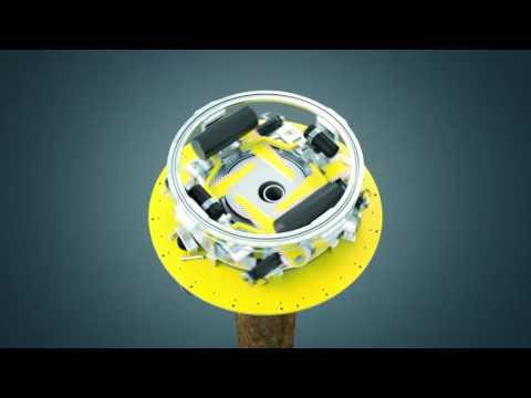 GreenTurtle & Sawfish Animation preview