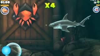 Hungry shark caranguejo gigante