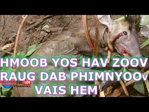 HMOOB MUS YOS HAV ZOOV RAUG DAB, LOS PHIM YOOS VAIS HEM! 2 End