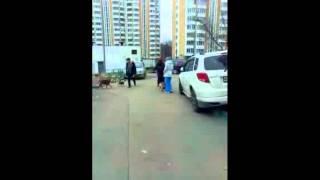 Обнаглевшие собачницы выгуливают собак без поводков на детской площадке