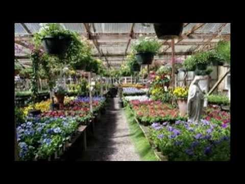 Nursery and Garden Center Yucca Valley CA 92284