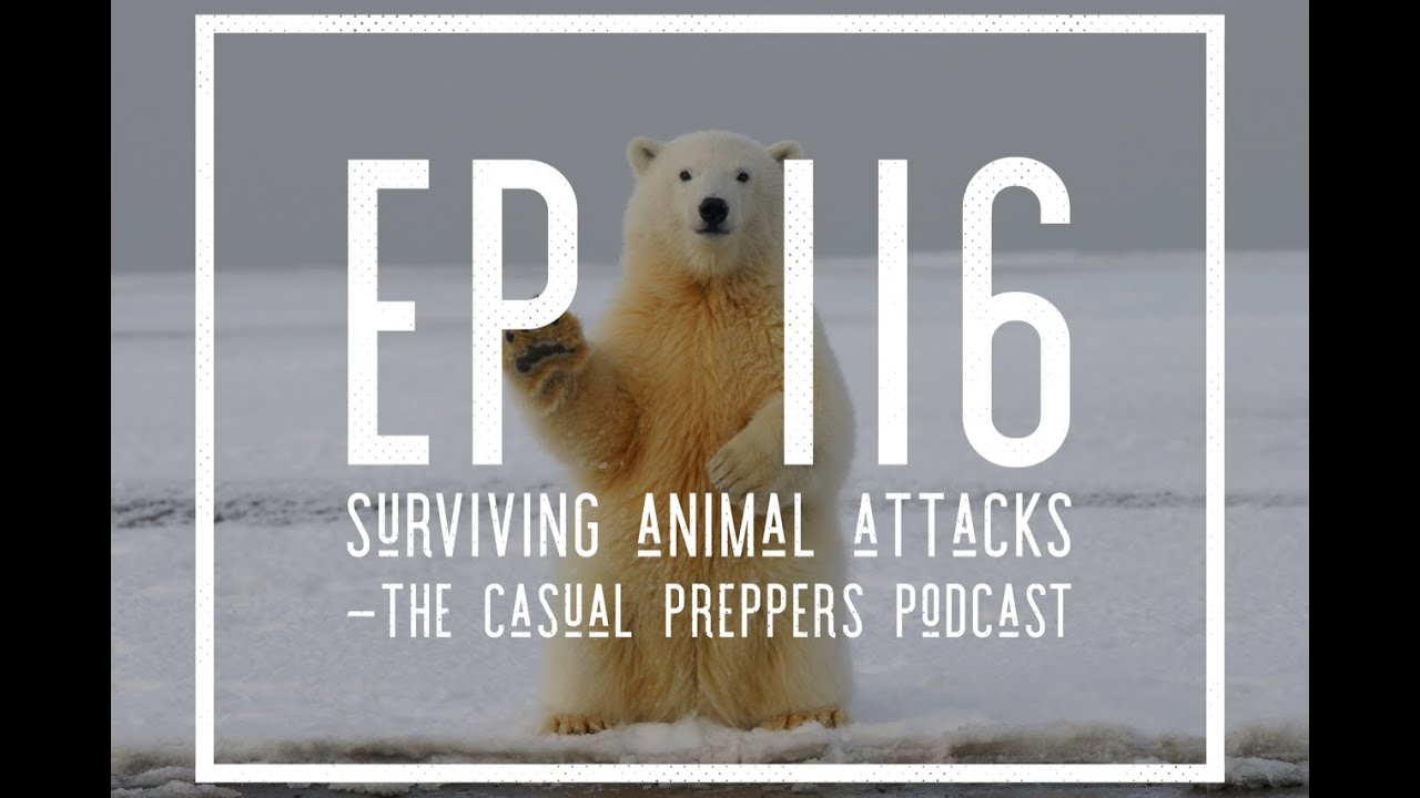 Surviving Animal Attacks - EP 116