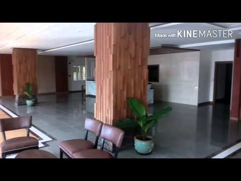 D hotel Pattaya reception area.