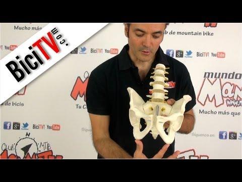 posición de silla de montar de próstata dolor de mtb