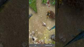 잉어 연못 라이브 배경화면 Water Garden Live Wallpaper screenshot 1