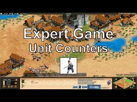 Aoe2: Expert Game - Mindgames & Counters
