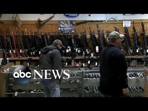 Americans Deeply Divided on Gun Control Issues
