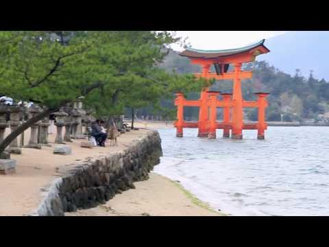 WORKING HOLIDAY EN JAPÓN