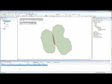 Basic Topology in ArcMap