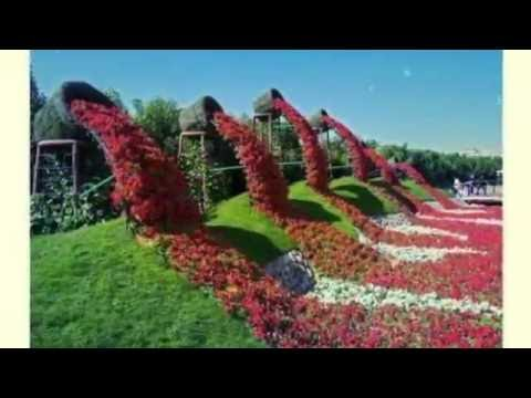 The Most Beautiful Flower Gardens In World Amazing