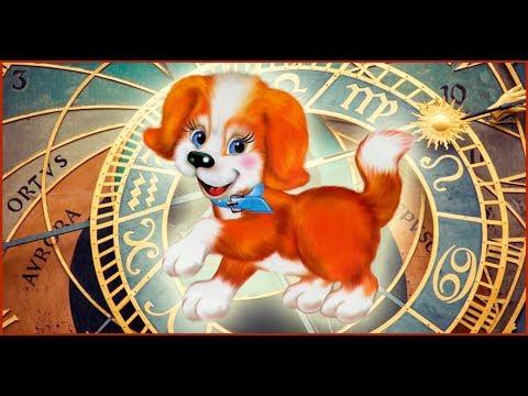 Самое прикольное поздравление с Новым годом жёлтой собаки ! - Видео с Ютуба без ограничений