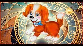 Самое прикольное поздравление с Новым годом жёлтой собаки !