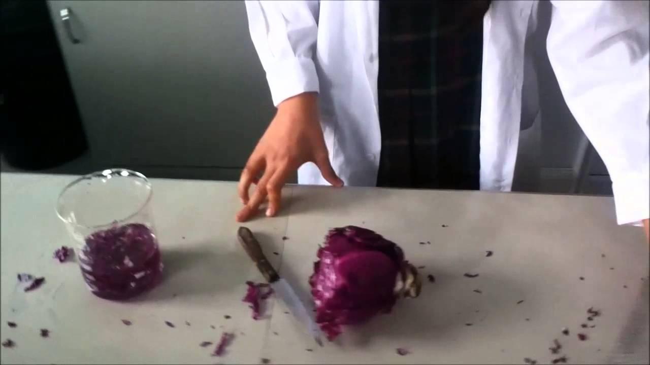 como preparar jugo de repollo morado