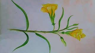 yellow flower kaner painting easy draw paint