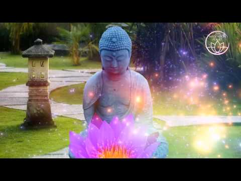 30 Minutes Short Meditation Music - Expand Your Consciousness and find Zen