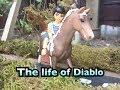 The life of Diablo   aflevering 3   schleich serie   schleichlover2005