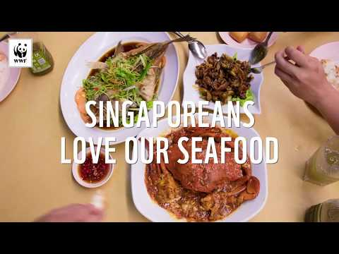 """Sustainable Seafood in Singapore"" - Marina Bay Sands online case study"