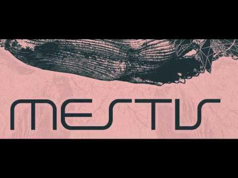 Mestis Tour w/ special guest Hyvmine