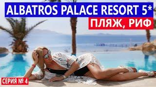 ЕГИПЕТ ЛУЧШЕГО ОТДЫХА НЕ БЫЛО ОТЕЛЬ Albatros Palace Шарм эль Шейх ПЕСЧАНЫЙ ПЛЯЖ и РИФ