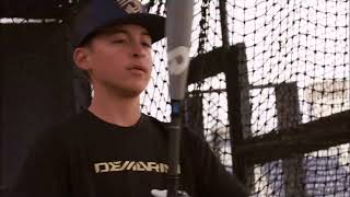 2019 DEMARINI USA BASEBALL BATS USA BASEBALL LITTLE LEAGUE BAT REVIEWS