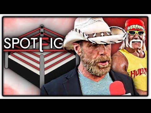 Shawn Michaels & Hogan vor Comeback? Rousey vs. Cyborg? (Wrestling News Deutschland)
