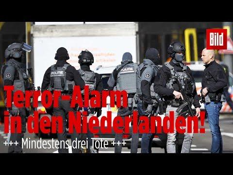 Schüsse in Utrecht – Mehrere Verletzte – Täter flüchtig