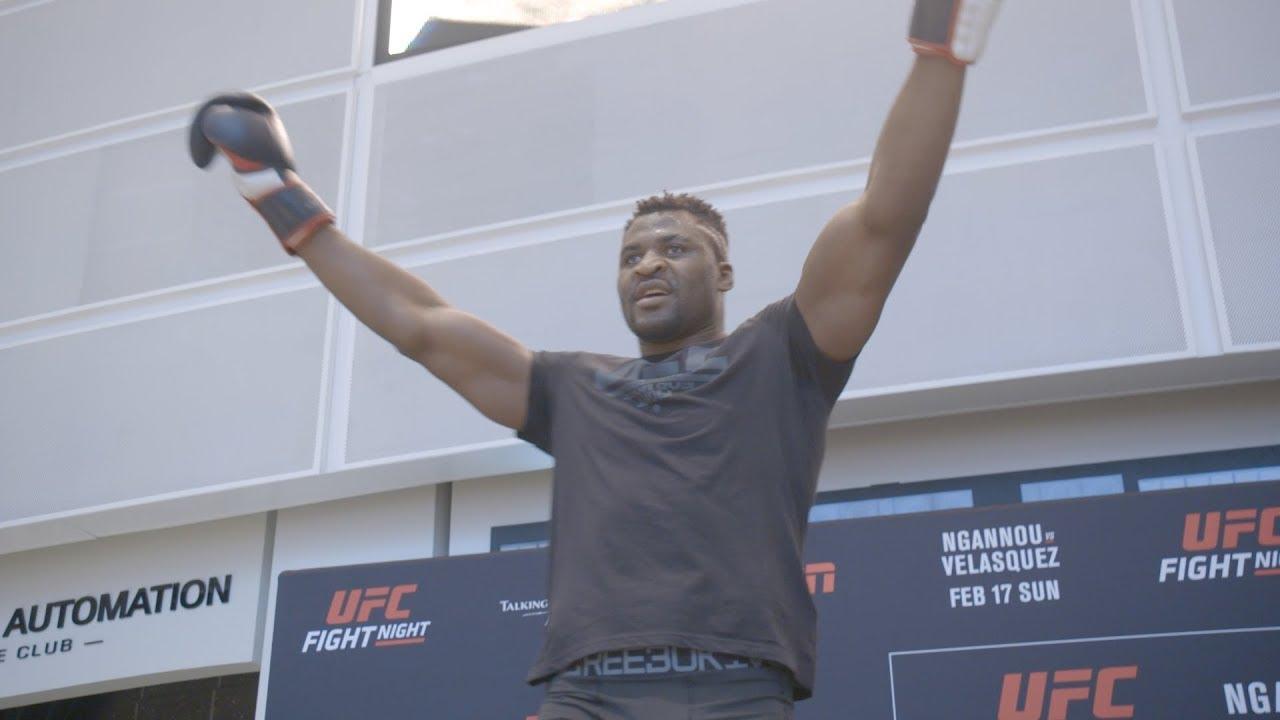UFC Phoenix: Open Workout Highlights