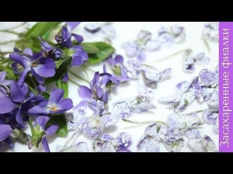 ЗАСАХАРЕННЫЕ ФИАЛКИ - Цветы в сахаре, рецепт | CANDIED VIOLET
