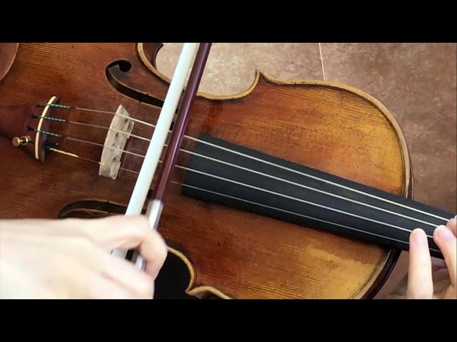 Ifstrings Master Build deluxe wood #343 Guarneri del Gesu 1740