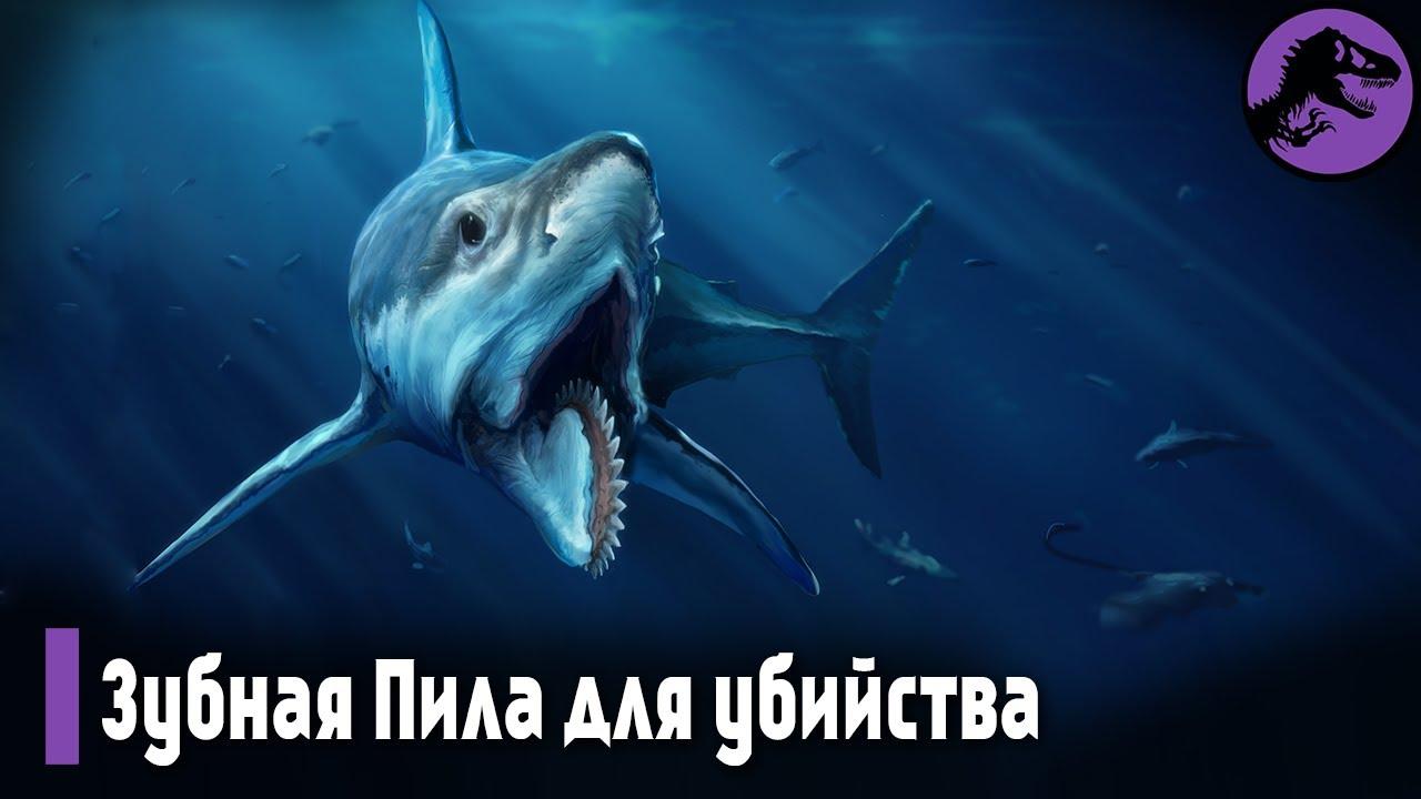 Акула с ЦИРКУЛЯРНОЙ ПИЛОЙ 🔥 Эволюция СОШЛА С УМА или ...